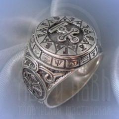 """кольцо """"Чертог Змея"""" серебрение"""
